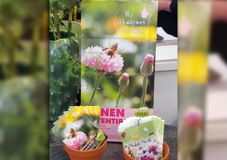 Pflanzen für Bienen und Schmetterlinge 1