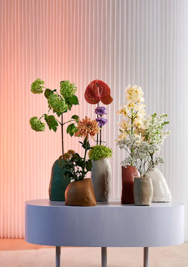 trends Quelle und Foto: pflanzenfreude.de 1